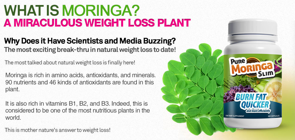 Buy Pure Moringa Slim